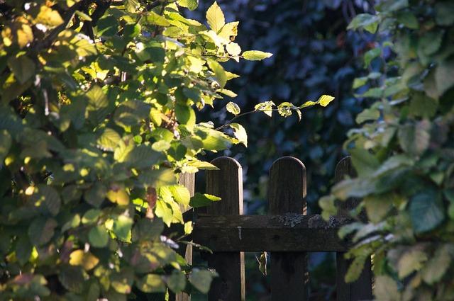 garden-gate-2758466_640